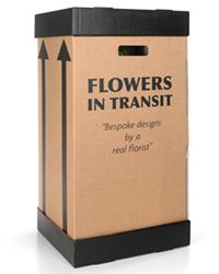 transit boxes
